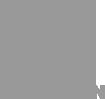 Logo Truong An